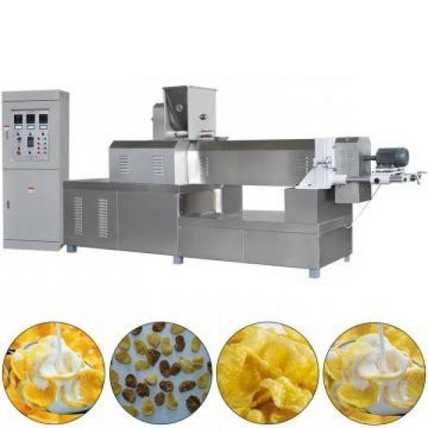 Hot Sale Baby Rice Powder Food Machinery Stainless Steel Food Processing Machine #1 image