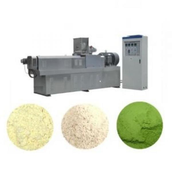 Double Screw Extrusion Snack Baby Cereals Food Processing Machine #1 image