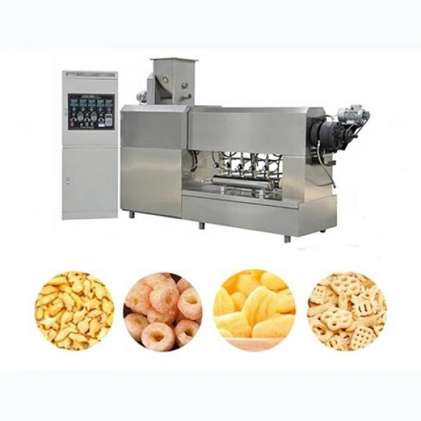Chinese Shandong Shenrun Vegetable Corn Wheat Materials Dry Puffed Dog Kibbles Snacks Cat Food Fish Feed Manufacturing Equipment #1 image