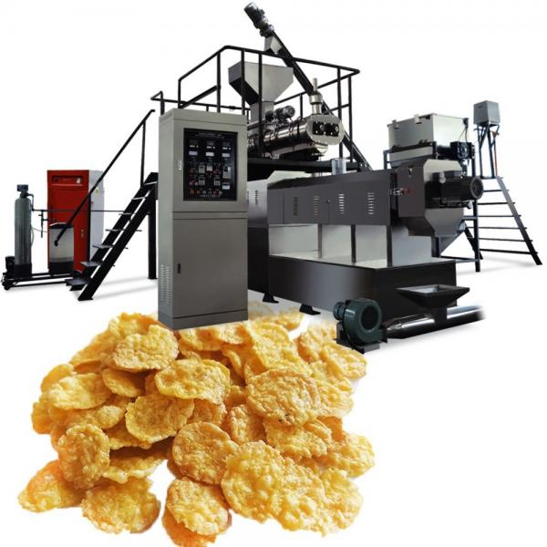 Fully Automatic Potato French Fries Potato Chips Making Machine Frozen French Fries Production Line #1 image