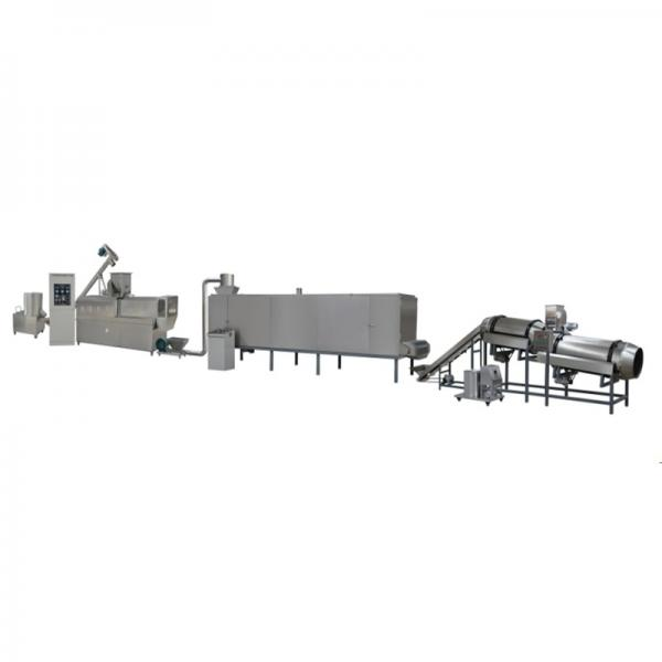 Instant Nutritional Artificial Rice Extruder Making Machine Production Line #1 image