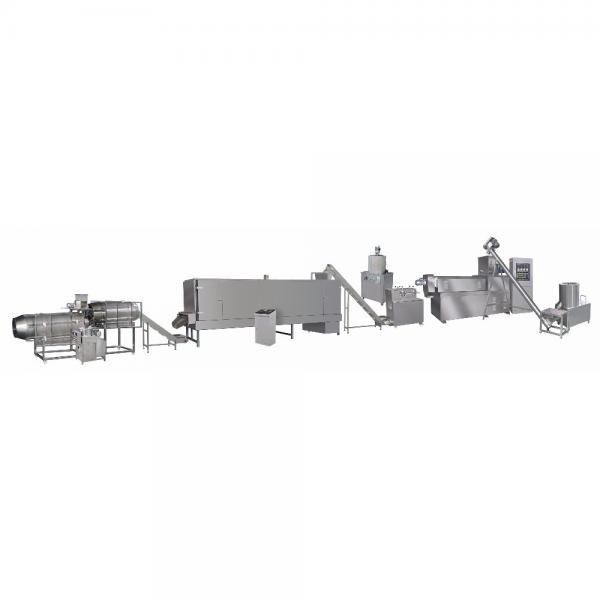 Extruded Artificial Rice Nutritional Rice Food Extruder #1 image