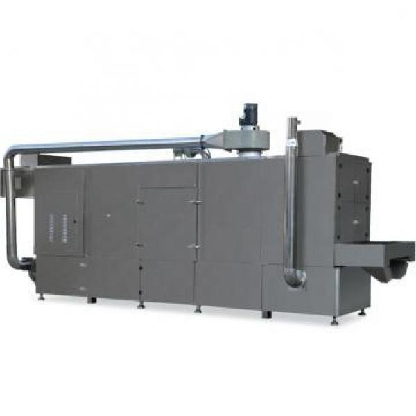 Advanced Design Qualified Frozen and Fried Potato Chips Manufacturing Machine #1 image