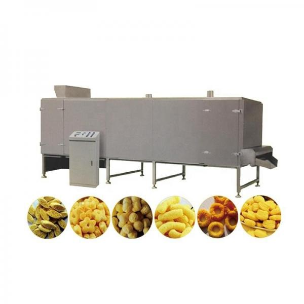 Twin Screw Extruder Baby Food Processing Machine Line #1 image