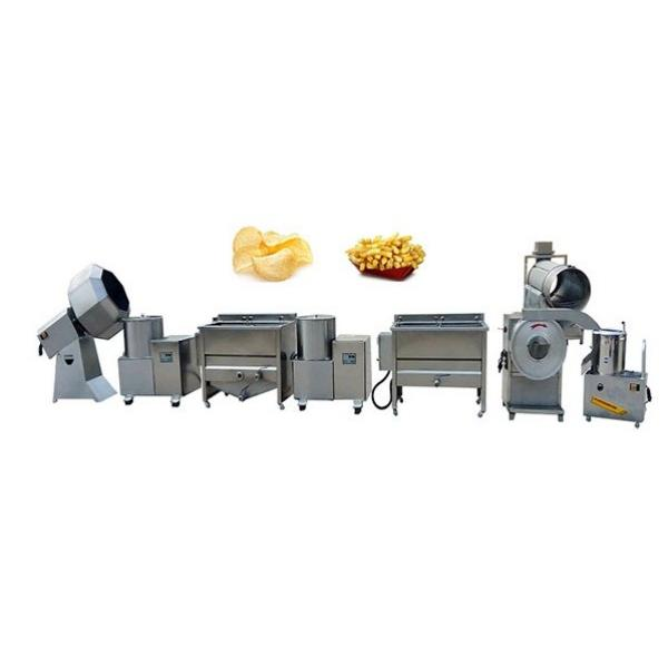 Large Commercial Vacuum Microwave Tray Vegetable Fruit Drying Machine #1 image