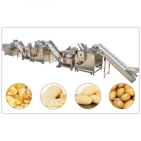 Gsg Gusu Cereal Nuts and Dry Fruits Bar Production Line #1 image