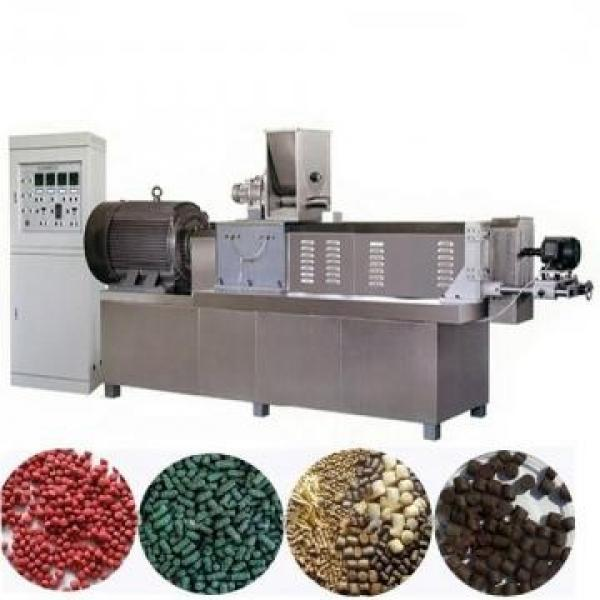 Fully Automatic Grain Rice Puffed Corn Chips Snacks Extrusion Machine #1 image