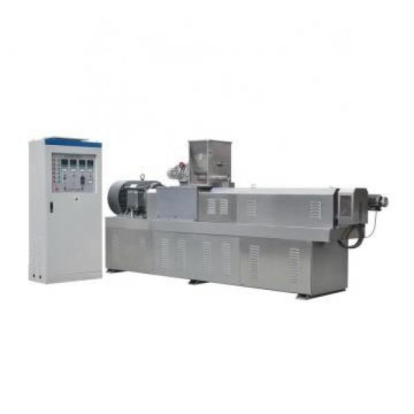 Ce ISO9001 Automatic Customized Double Screw Extruder Food Bulking Machine Corn Rice Cereal Grain Puffed Extruded Snack Expander Extrusion Line Machinery #1 image